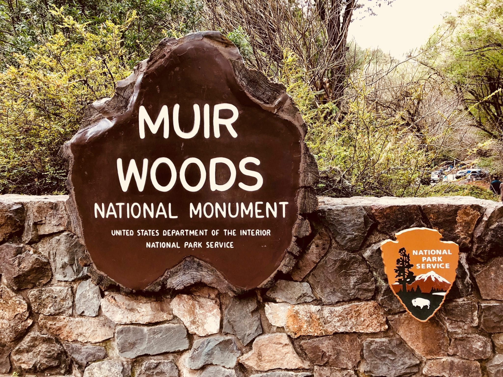muir woods national monument Ironically, the area that is now muir woods national monument was saved because in the 19th century it was just too hard for loggers to get there located just 12 miles from the golden gate bridge, this old-growth stand is now wonderfully accessible to anyone who wants to take a walk in the woods.